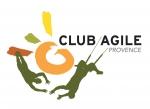 stratégie,organisation,gestion,management optimiste,agilité,marie-christine pessiot